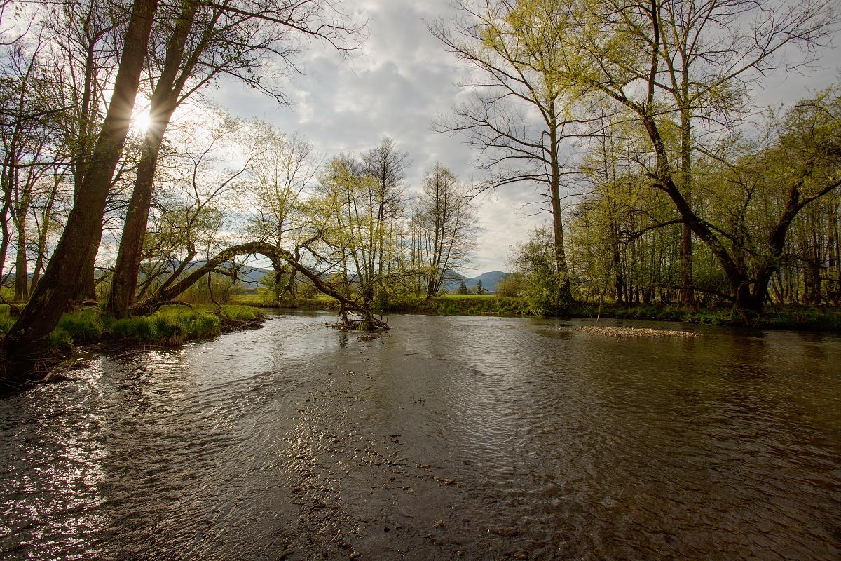 rieka Turiec, NPR Kláštorské lúky, Turčianska kotlina, Slovensko