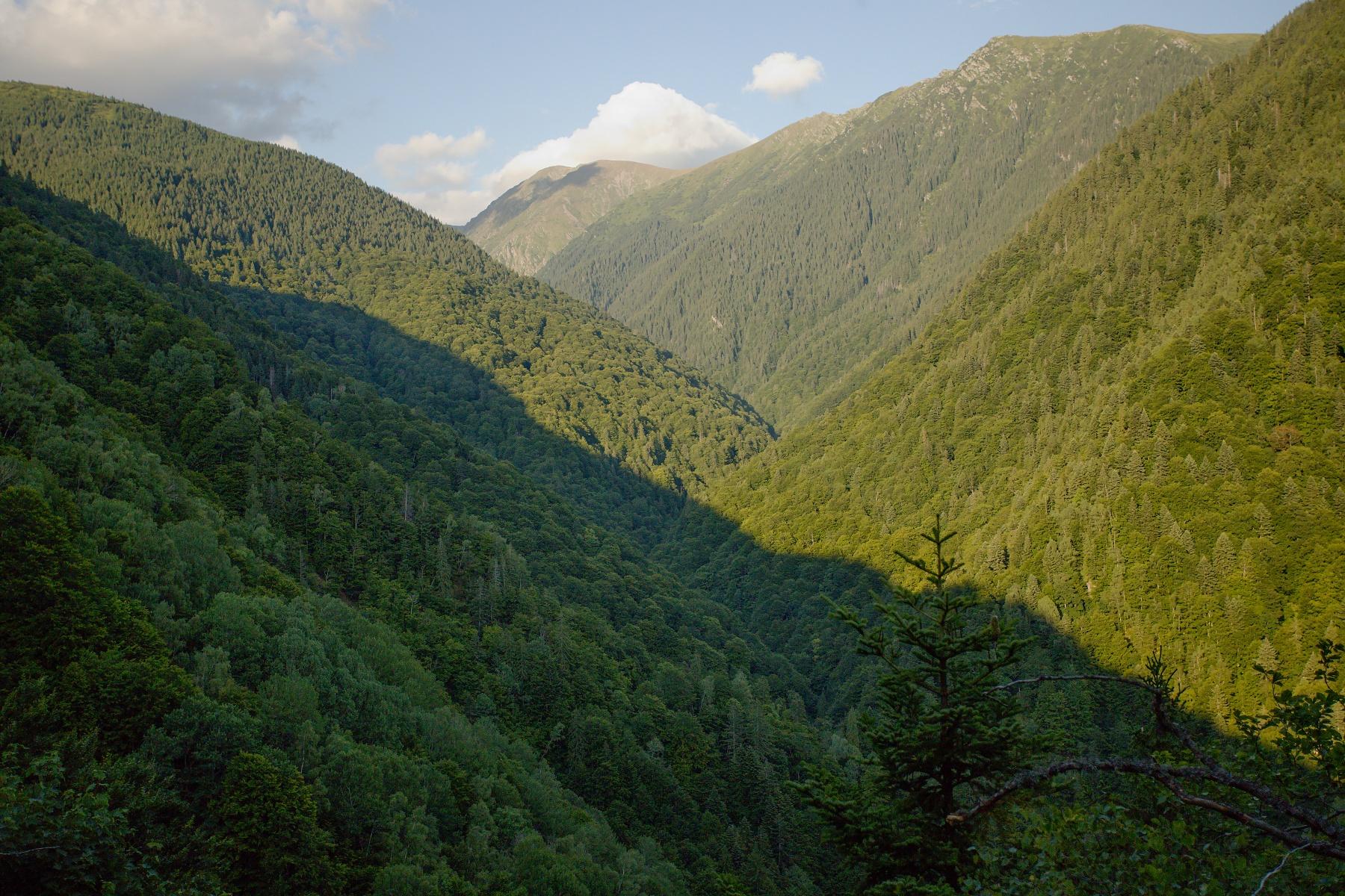 Boia Mică, Munții Făgăraș, Romania Canon EOS 6D mark II, Canon 17-40 mm, 40 mm, f4, 1/4000, ISO 2000, 5. august 2019