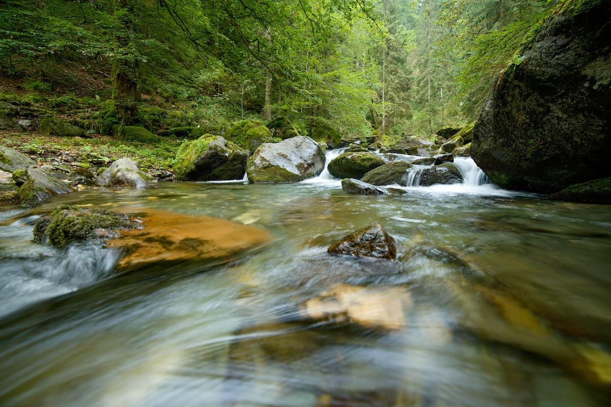 Valea Arpasului, Munții Făgăraș, Romania Canon EOS 5D mark III, Samyang 14 mm f2.8 IF-ED UMC, f8, 1_5, ISO 400, 30. august 2018