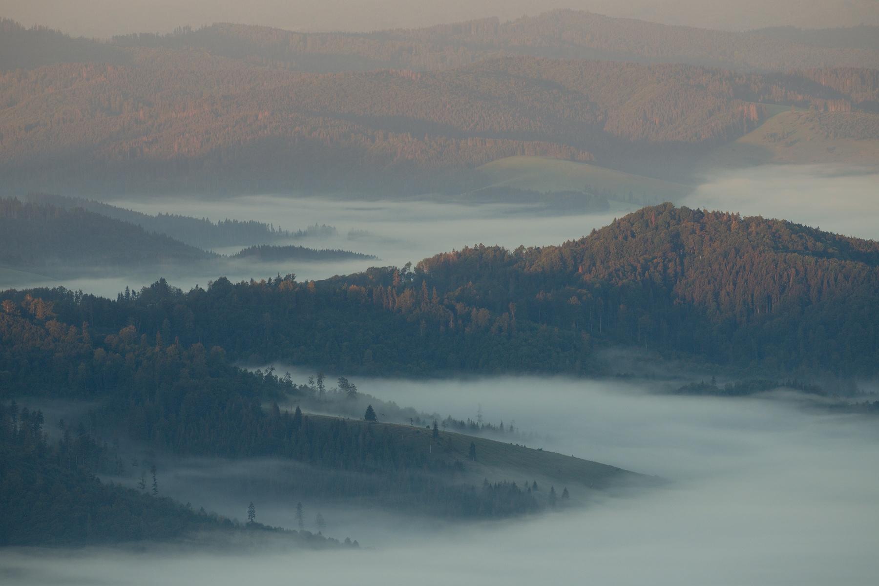 Muránska planina, Slovensko Canon EOS 6D mark II, Canon 100-400mm, f4.5-5.6 L IS II USM, 278 mm, 1/125, f8, ISO 320, 10. september 2020