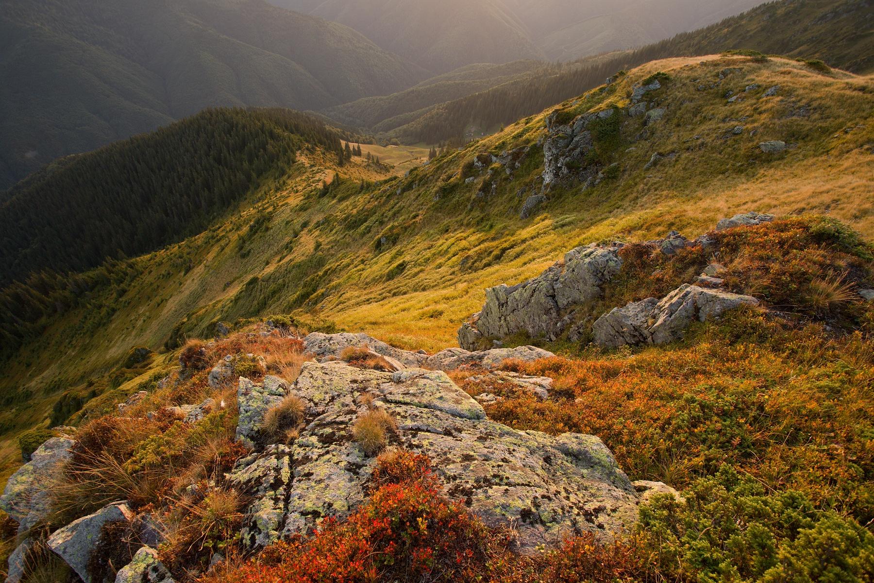 Mihailecu, Munții Maramureșului, Romania Canon EOS 6d mark II + Canon 17-40mm, 17mm, 1/20, f10, ISO 250, 22. september 2020