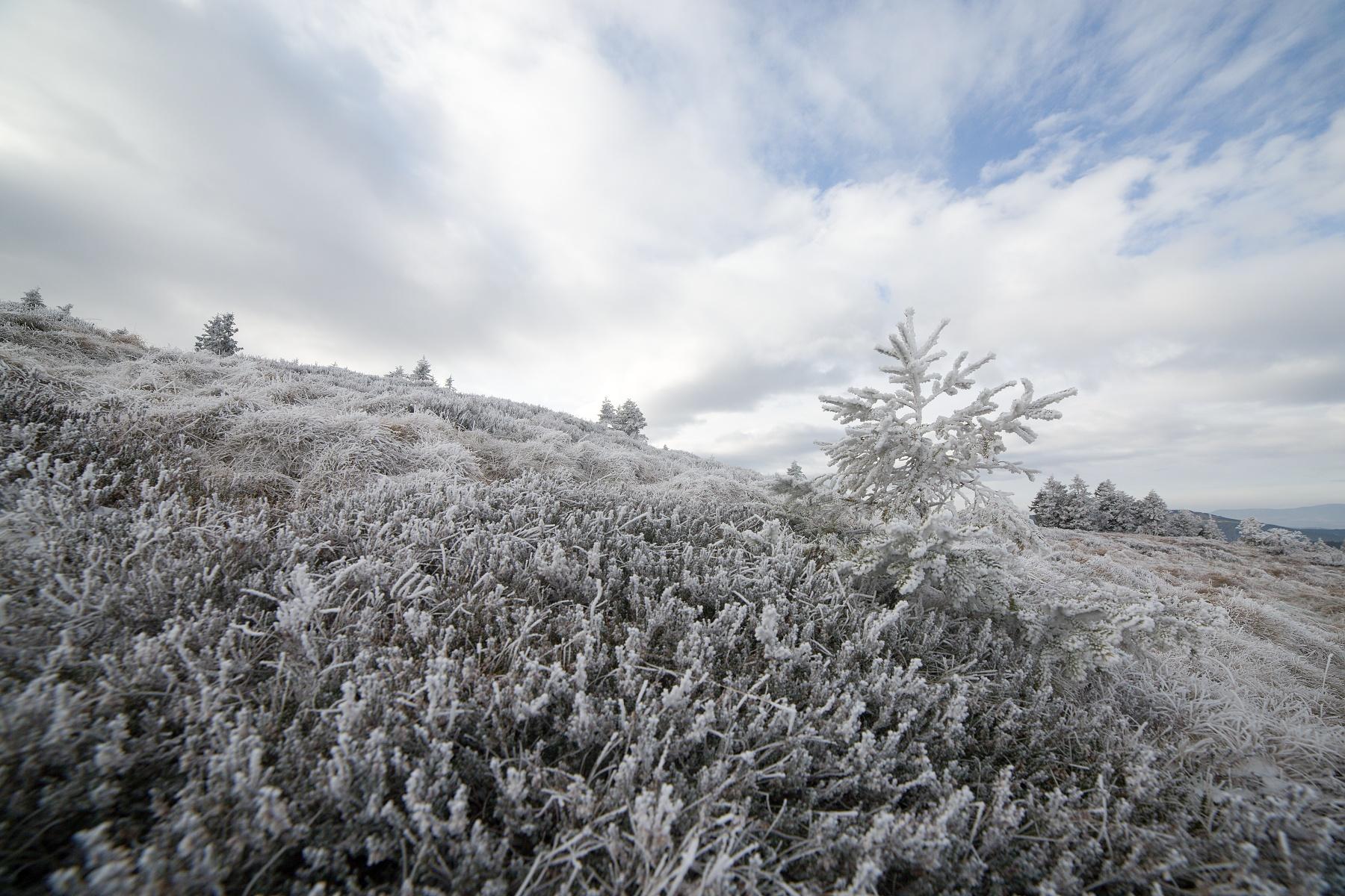 Vysoká hole, Hrubý Jeseník, CHKO Jeseníky, Česká republika Canon EOS 5d mark III, Samyang 14mm f2.8 IF-ED UMC, f8, 1/500, ISO 250, 19. november 2018